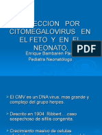 INFECCION   POR CITOMEGALOVIRUS   EN  EL FETO  Y  EN.ppt