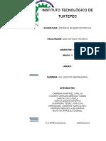 II Unidad Sistema de Informacion Externo