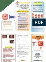 Ca Cervix.pdf