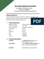 CV. Cluber Janin Carranza Goicochea