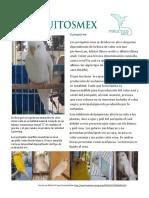 El Periquito Ino- PeriquitosMex