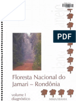 Flona Jamari Pm Diagnostico
