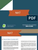 NAT (C17).pdf