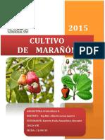 Informe Del Cultivo de Marañón- FRUTICULTURA