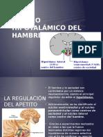 Centro Hipotalámico Del Hambre