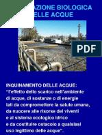 1._DEPURAZIONE_BIOLOGICA_DELLE_ACQUE_1_.pdf