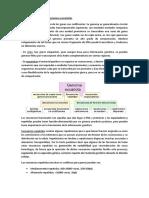 Genomas Procariotas vs Genomas Eucariotas 2