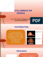 expo Metanefrinas.pdf