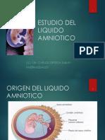Liquido Amniotic