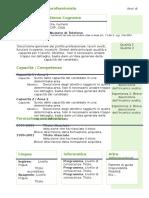 modello-curriculum-04.doc