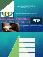 Patologia benigna de vulva,vagina y cervix.pptx