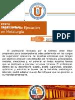 Perfil IEM - ICM (Oficial)