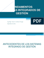 Fundamentos sistemas de gestion integrada