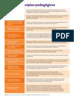 principios pedagogicos 2016.pdf