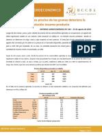 Informe Agroeconómico N°100