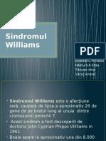 Sindrom Williams