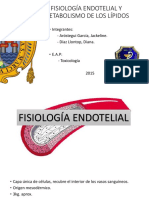 Fisiología Endotelial y Lipidos