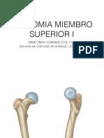 Osteologia y Miología Mb Inferior A
