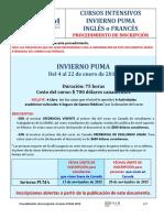 Invierno Puma