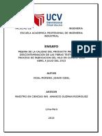 ENSAYO FINAL DE PROCESOS INDUSTRIALES.docx