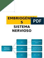 Embriogénesis Sitema Nervioso