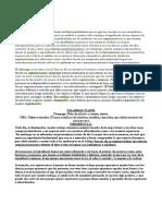 El Lider caracteristicas.pdf