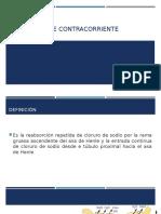 MECANISMO DE CONTRACORRIENTE.pptx