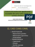 Sistema de Producción Agroforestal Inundable Del Camu-camu Frente Al Cambio Climático