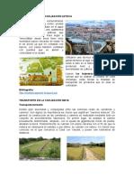 Transporte en La Civilización Azteca y Maya