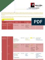 Steve Biko Foundation FY2015Program Highlights v2
