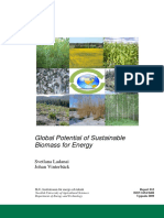 Global Potential of Sustainable Biomass for Energy(2009)S.ladaNAI & J.vintERBACK