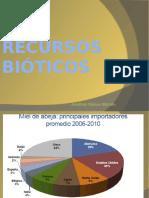 RECURSOS BIÓTICOS.pptx