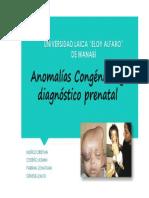 Anomalías-embrio