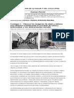 Sociologia de La Salud y Etapas Del Ciclo Vital.