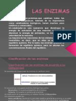 Las Enzimas Diapositivas