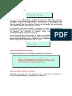 CONTROL INTERNO.docx
