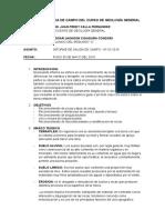 INFORME DE SALIDA DE CAMPO de geologia Nº 001 2016.docx