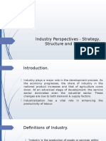 Industry Perspectives - Strategy, Structure and Process
