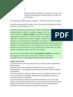 ACIDOS CARBOXILICOS.docx