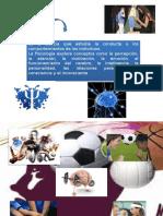 Funciones Del Psicologo Deportivo y Motivacion