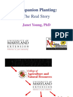 Companion Planting - The Real Story (Janet Young, PhD.).pdf