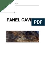 Panel Caving