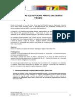 Consultas Ao SQL Server 2005 Através Dos Objetos