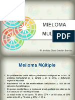 Mie Loma Multiple