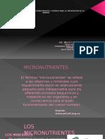 Micronutrientes Ponencia 16 Abril