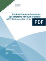 Escharotomy CPG New Format
