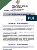 Aula 2 - Legislação e Direito Ambiental_ (1)