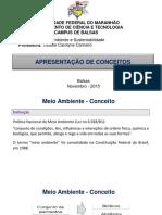 Aula 1 - Apresentação de Conceitos.pdf