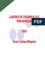 Labores de desarrollo.pdf