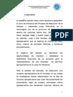Estudio PLAN DE NEGOCIOS CSA.docx